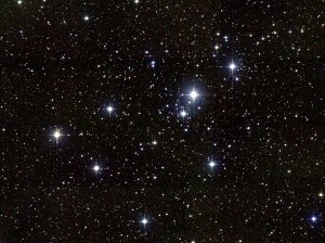 Sitting more than 2,100 light years from Earth, the Little Beehive Cluster shines bright in the evening sky this week. Credit: NOAO