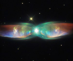 Seemingly flapping cosmic wings of gas, the Butterfly Nebula has only been flying across the constellation Ophiuchus for around 1,200 years. A binary star system with suns in the final days of their life cycles, astronomers are currently studying this unusual celestial object in hopes of understanding the processes creating such stunning beauty.