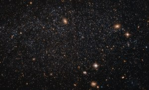 "At first glance this NASA/ESA Hubble Space Telescope image seems to show an array of different cosmic objects, but the speckling of stars shown here actually forms a single body — a nearby dwarf galaxy known as Leo A. Its few million stars are so sparsely distributed that some distant background galaxies are visible through it. Leo A itself is at a distance of about 2.5 million light-years from Earth and a member of the Local Group of galaxies; a group that includes the Milky Way and the well-known Andromeda galaxy. Astronomers study dwarf galaxies because they are very numerous and are  simpler in structure than their giant cousins. However, their small size makes them difficult to study at great distances. As a result, the dwarf galaxies of the Local Group are of particular interest, as they are close enough to study in detail. As it turns out, Leo A is a rather unusual galaxy. It is one of the most isolated galaxies in the Local Group, has no obvious structural features beyond being a roughly spherical mass of stars, and shows no evidence for recent interactions with any of its few neighbours. However, the galaxy's contents are overwhelmingly dominated by relatively young stars, something that would normally be the result of a recent interaction with another galaxy. Around 90% of the stars in Leo A are less than eight billion years old — young in cosmic terms! This raises a number of intriguing questions about why star formation in Leo A did not take place on the ""usual"" timescale, but instead waited until it was good and ready."