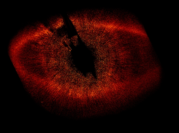 The large disk of gas surrounding Fomalhaut is clearly visible in this image. It is not centred on Fomalhaut quite as predicted, hinting that the gravity of another body – perhaps a planet – is pulling it out of shape.