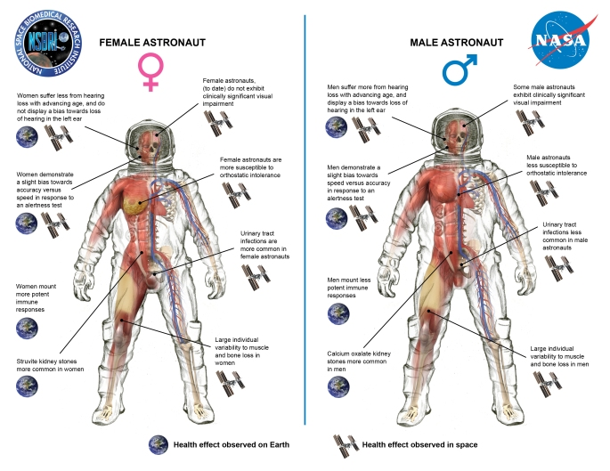 spaceradiationgenderillustration59459-jpg